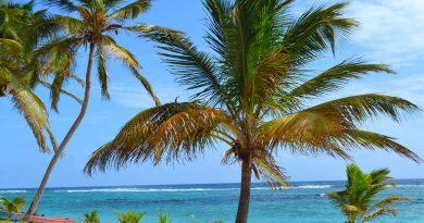 Découverte de la Guadeloupe