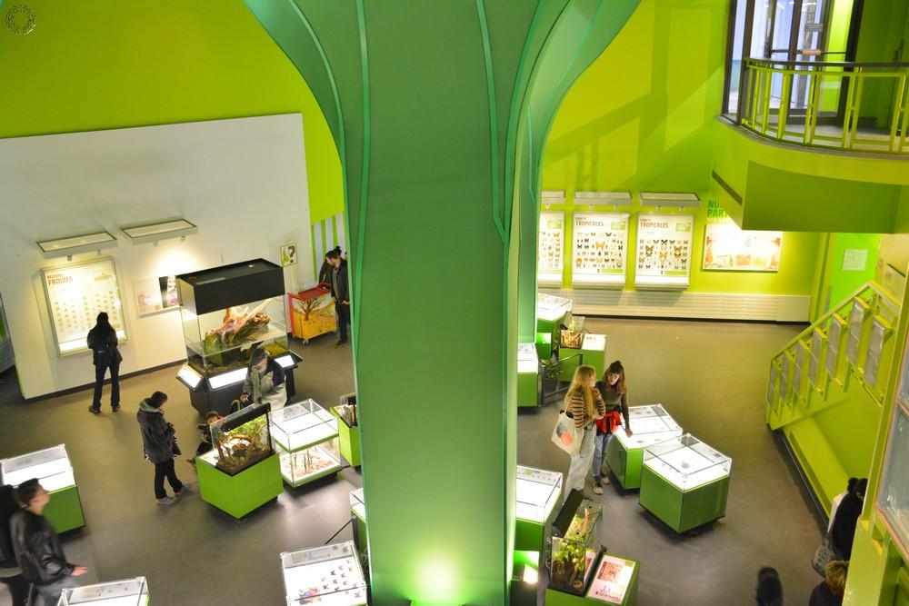 Insectarium Montréal